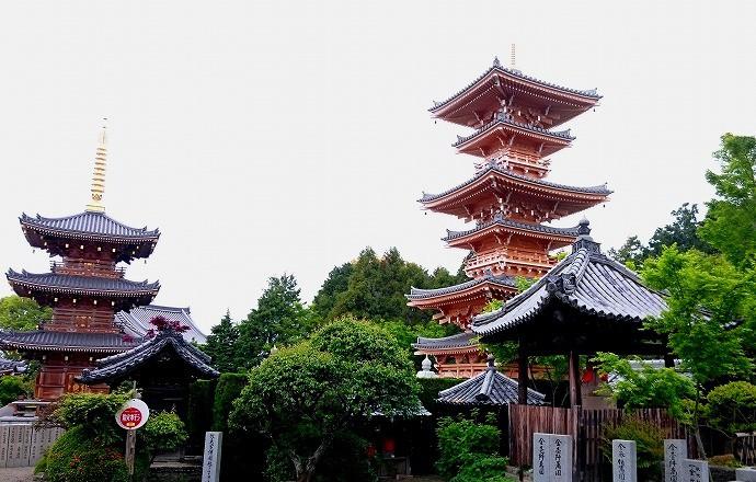 長慶寺紫陽花 (3)re