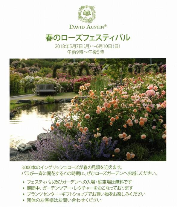300412 rosefestival003 (2)
